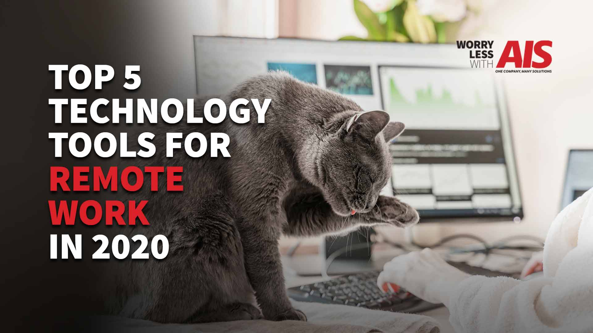 top-five-tech-tools-remote-work-2020
